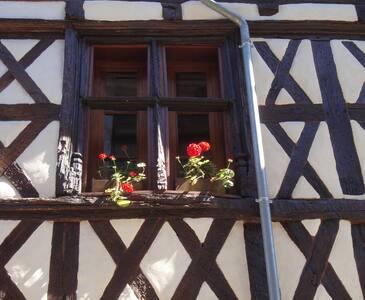 La Dordogne, Charming Beaulieu Apartment - Beaulieu-sur-Dordogne - Huoneisto