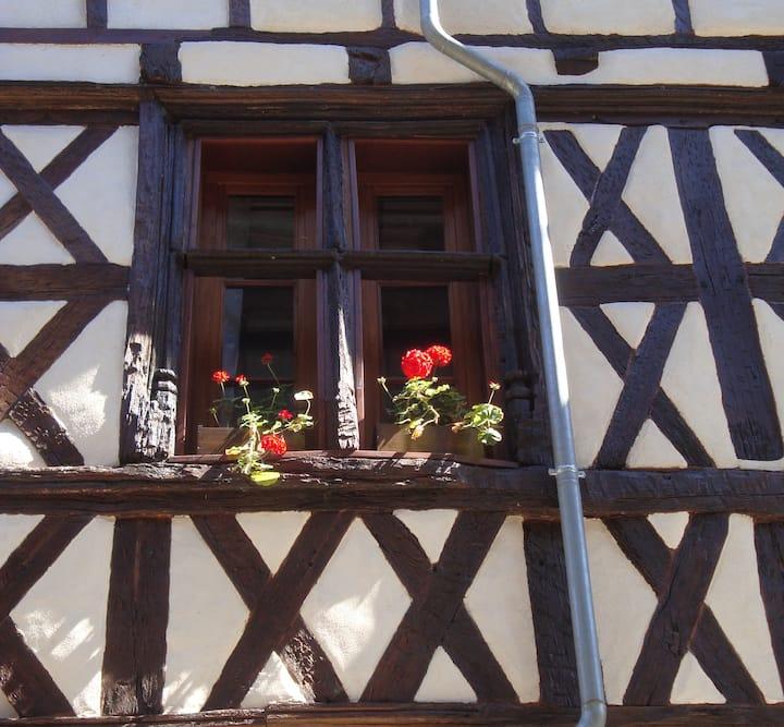 La Dordogne, Charming Beaulieu Apartment