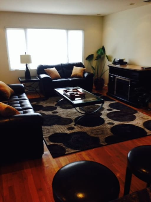 furnished living room - leather set