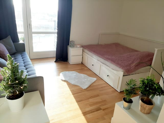 Bright, comfy apartment with a homey room