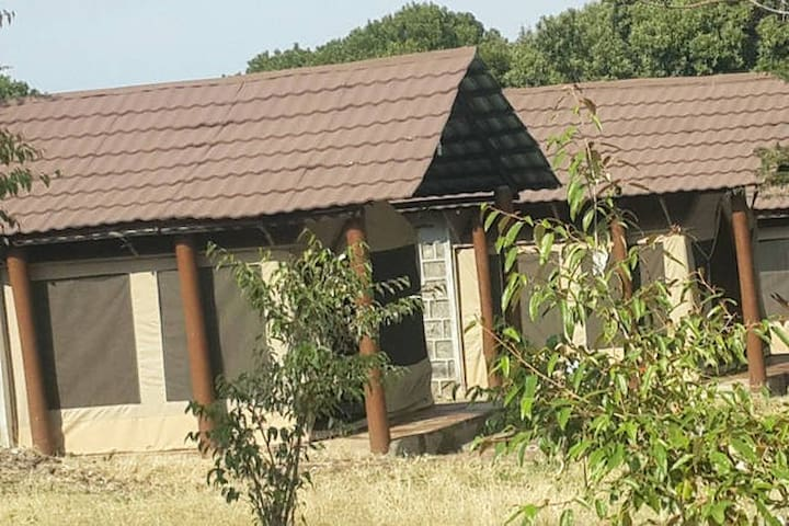 Masaimara Springs Camp_SixthTent