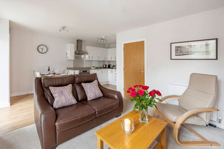 Luxury contemporary 2 bedroom apartment + parking