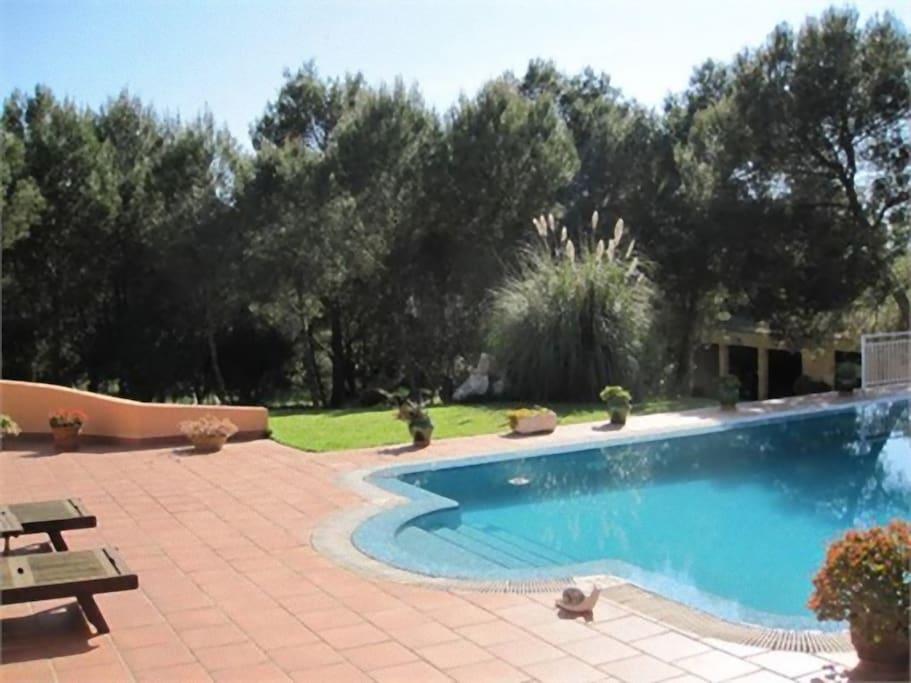Terraza y jardín privados