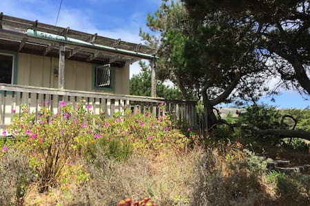 The Dune at Salmon Creek - Bodega Bay - Bungalov