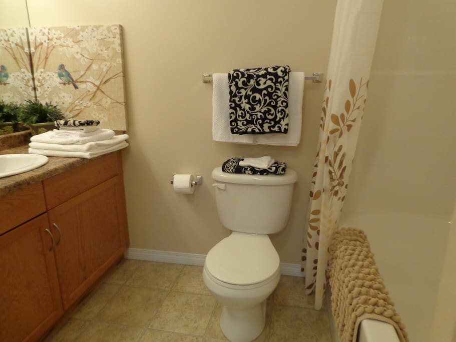 Shared bathroom with washer & dryer - extremely clean