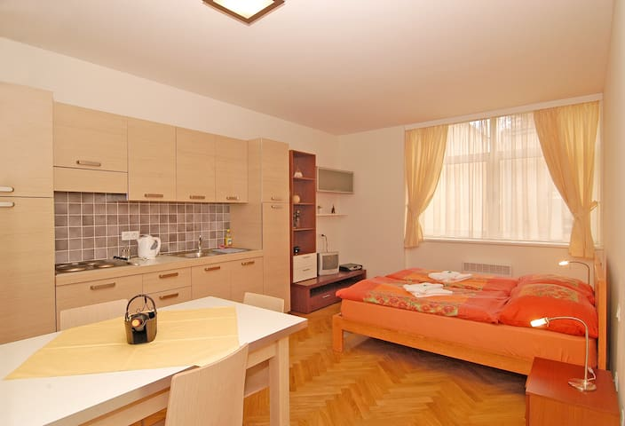 STUDIO APARTMENT OLD TOWN