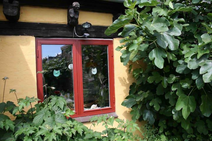 Hyggeligt charmerende byhus  - Svendborg - House