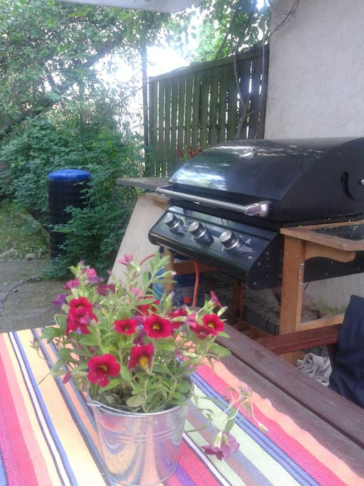 Miejsce do grillowania. Barbecue in garden