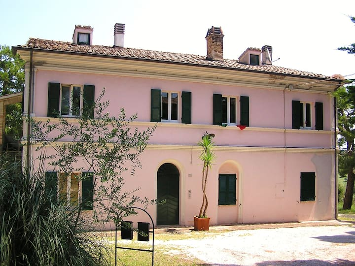 B&B La Celeste 7, country house