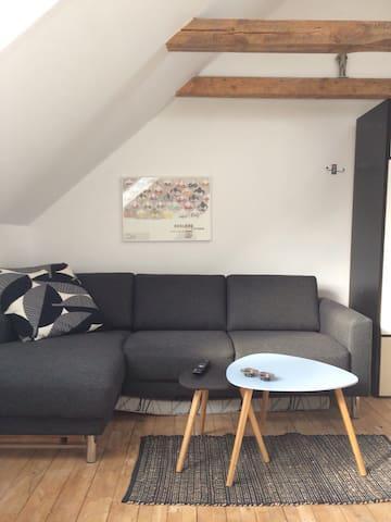 Large, bright room near city center, 20 sq m. - Aarhus - Huis