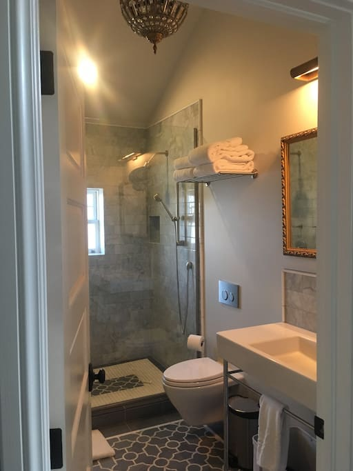 Main level Bathroom with 2 Shower heads and a wand