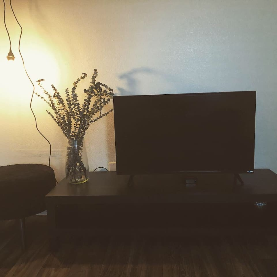 Minimalistic design with eucalyptus (fresh fragrance) and hanging Edison bulbs, 42inch tv with Apple TV