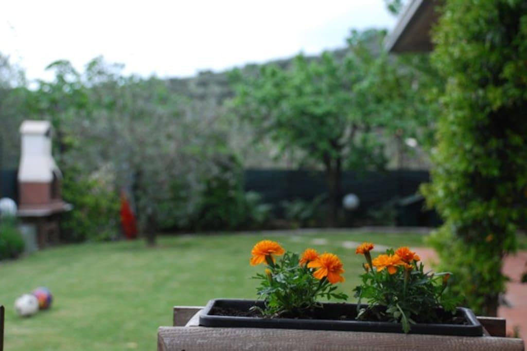 una vista del giardino