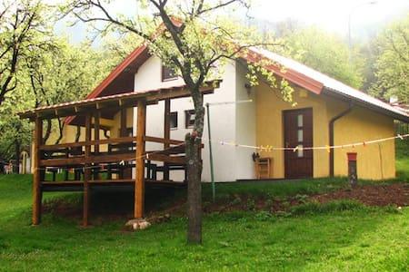 Accommodation in Pluzine - ZVONO 4B - Pluzine