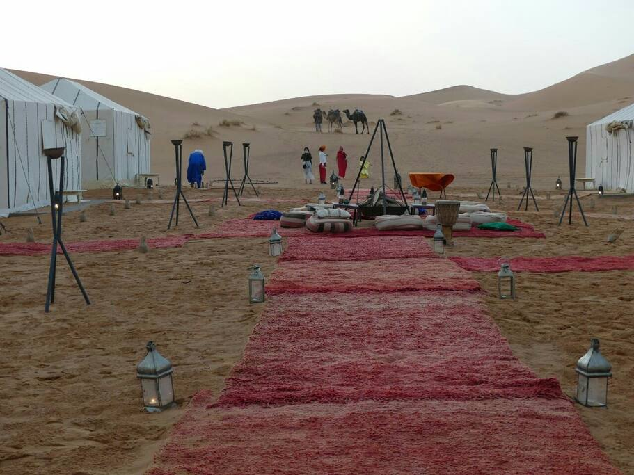 A view of camp with guests and Happy camels