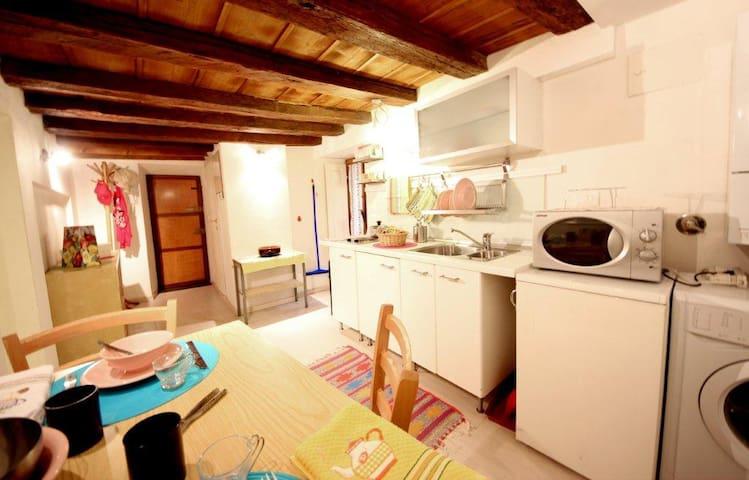 Condotta Studio by Piazza Signoria - Florens - Lägenhet