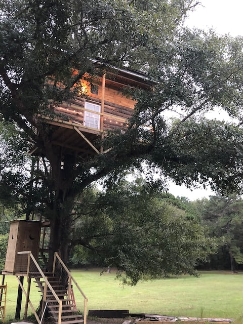 Sleep With the Alpacas In Our Tree Top Tree House.