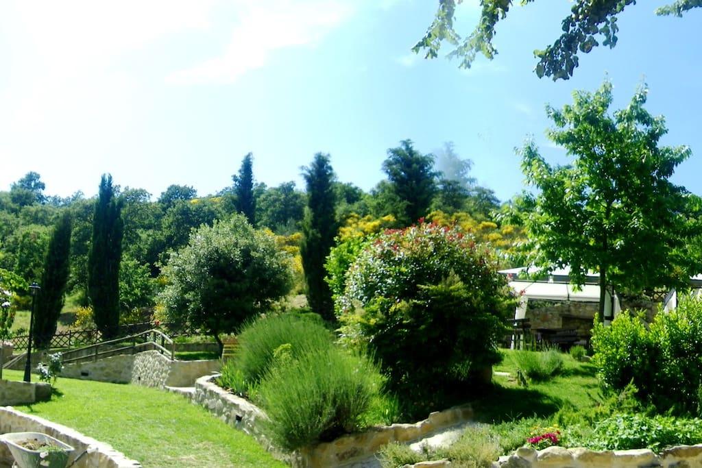The garden- il giardino