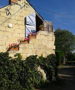 Gite rural proche Saumur - 索米尔 (Saumur) - 公寓