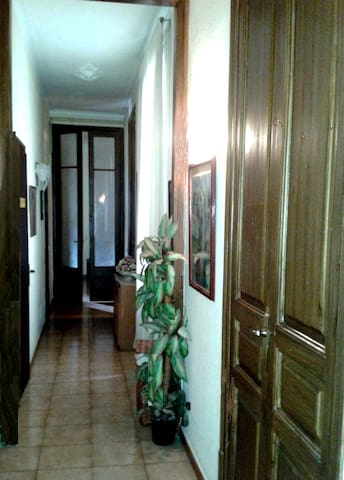 An impresion of the apartment constructed in 1880, totally renovated. This is the entrance hall.