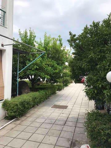 Porto Apartment Nata