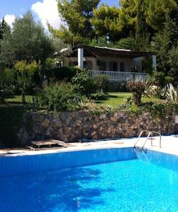 Seaside bungalows close to Athens & Delfi - Paralia - Bungalow