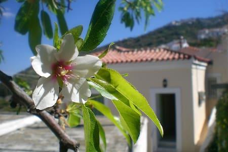 Villa in Livadia, Andros, Greece - Livadia