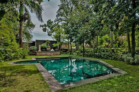 Unique balinese tropical paradise  - 쿠타