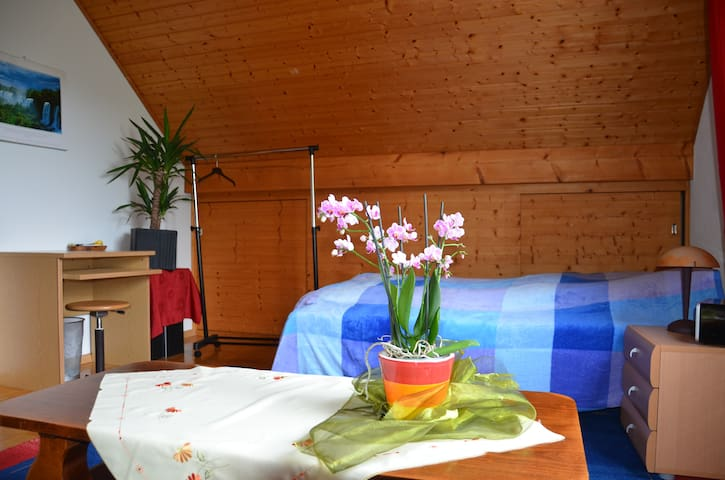 Nice private room close to Basel! - Reinach