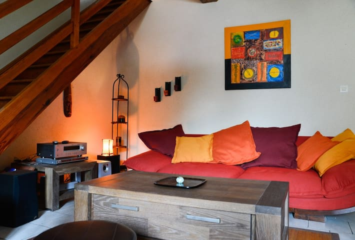 Charming house near the river - Angers - Dům