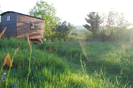 Magical Off-grid Shepherd's Hut, Pembrokeshire