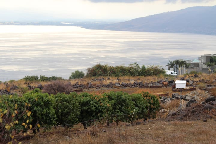 Sea of Galilee view 4 U - MP Golan South - Rumah