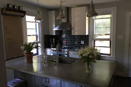 Newly Renovated Old West Side Home - House