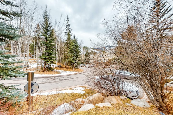 Mountain Condo with Free WiFi, Wood Fireplace & Washer/Dryer!