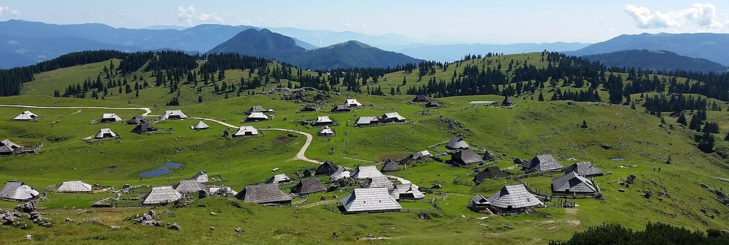 Cottage in beautiful nature - Velika planina