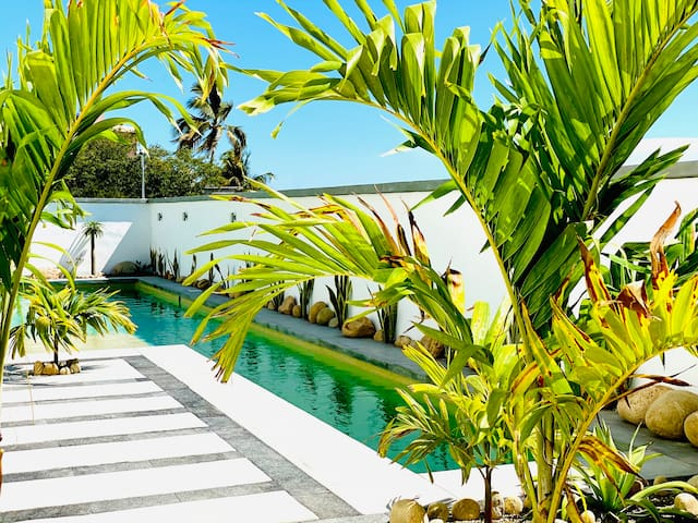 "Ocean View, Pool & Hi-Speed WiFi - ""Cabo Nest"""
