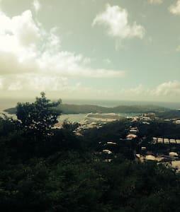 Villa Rosa - Charlotte Amalie West