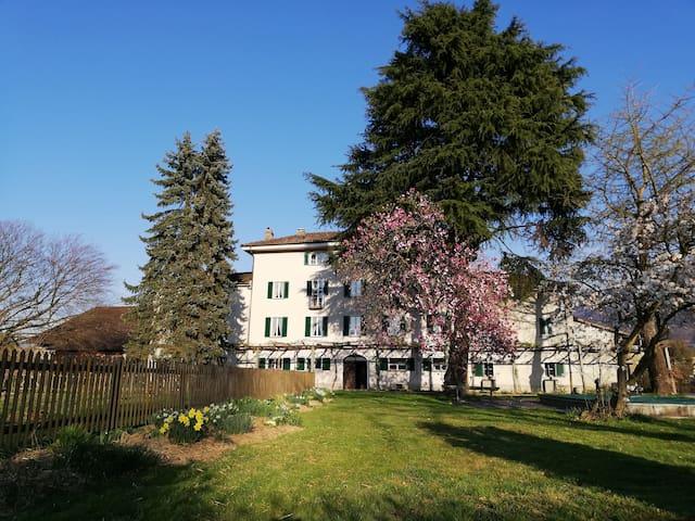 Masseria Ramello, FarmHouse - Room No. 4