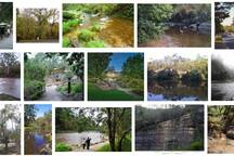 Beautiful views and things to do around Warrandyte
