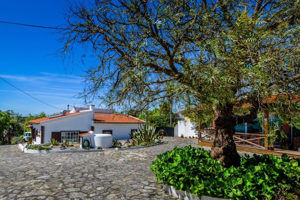 Cozy place chambres d 39 h tes louer caldas da rainha for Chambre d hote portugal