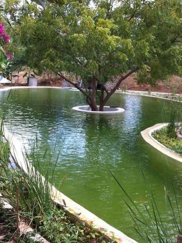 Bagan Private Villa  Paradise : river temple pooL - Nyaung-U - Casa