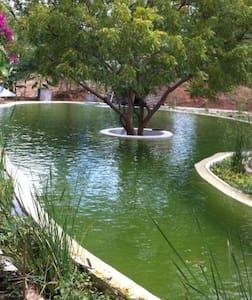 Bagan Private Villa  Paradise : river temple pooL - Nyaung-U