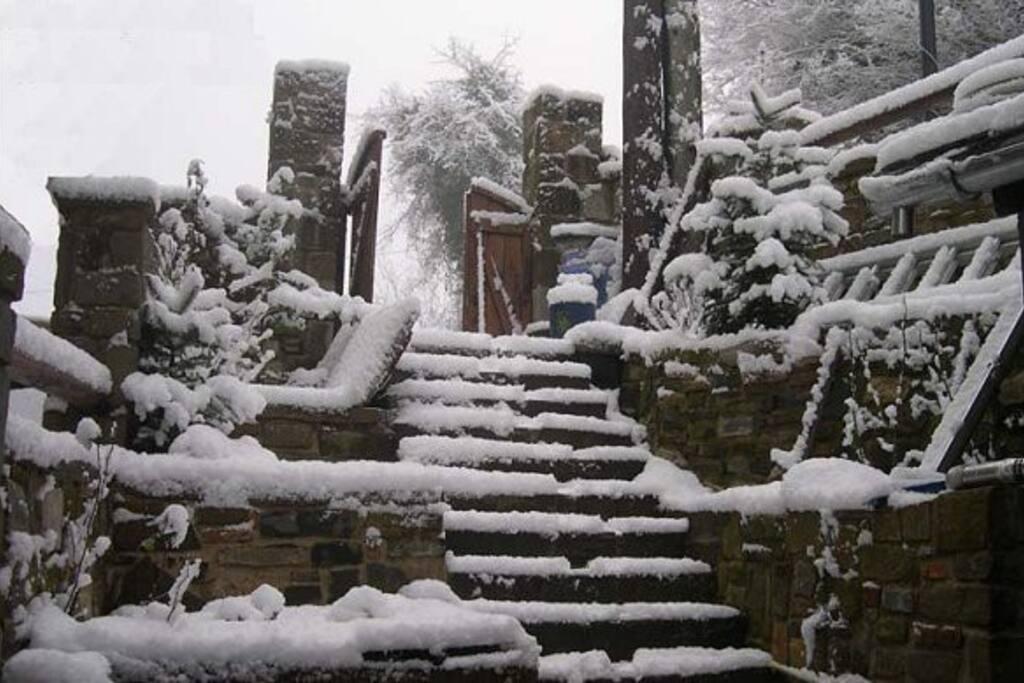 Χιονισμένη Αυλή