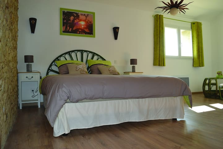 "Chambre ""Quetzal"" - Maison Antony - Heugas - Bed & Breakfast"