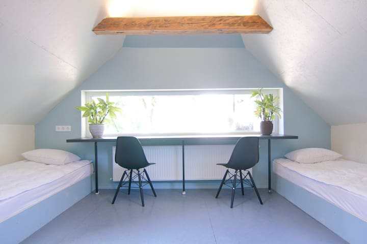 """Blue Mansard Room"" in Black Flamingo House"