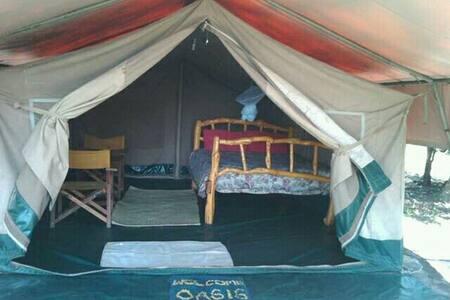 Oasis Eco Camp Lake Elementaita Tents.