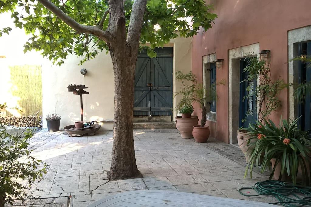 Aυλή με πλάτανο και κυρία είσοδο/main entrance and platanus tree