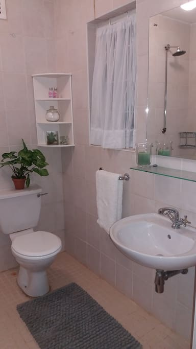 Shower and loo .
