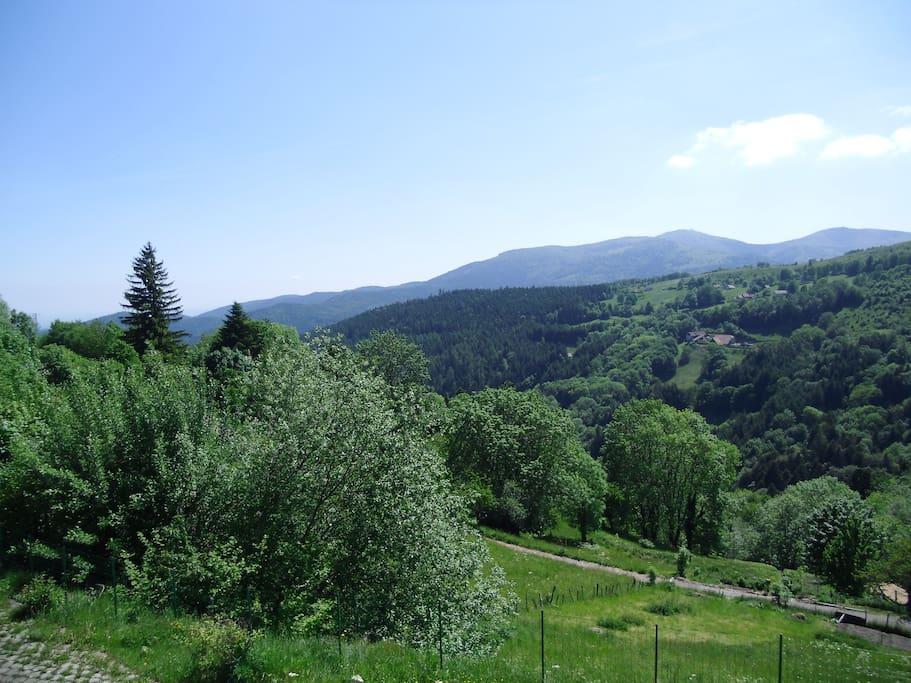 La vue du Gîte Hilsenblick