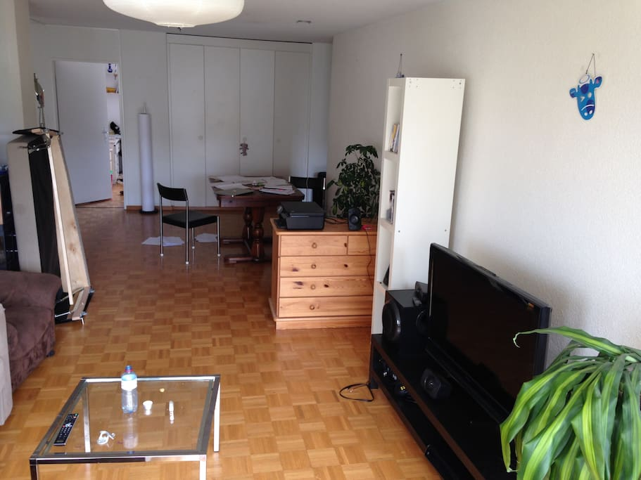 Living room with diner table and television